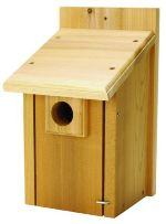 wooden bluebird house for sale