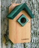 wood bluebird house with green roof
