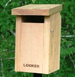 sparrow proof bluebird house with slot