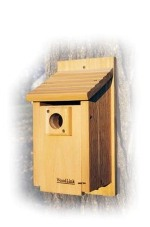 traditional bluebird house for sale