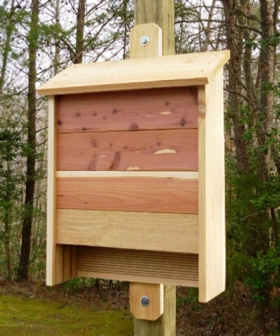 How to Build a Cedar Bat House. Plans Include Photos.