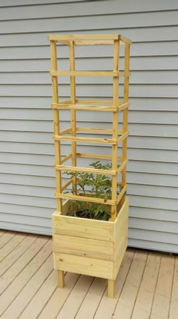 tomato planter with trellis