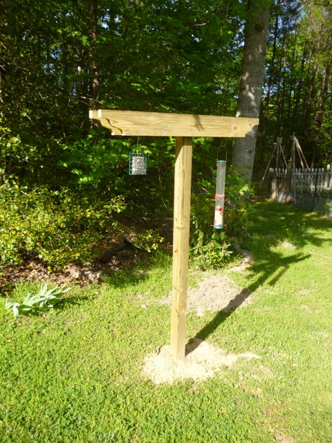 How To Build A Bird Feeding Station