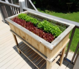 raised_cedar_planter_side.jpg
